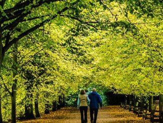 meditative walk destressing